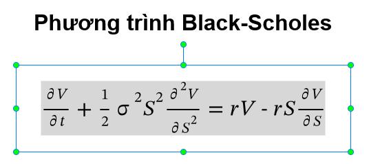 Phương trình Black-Scholes