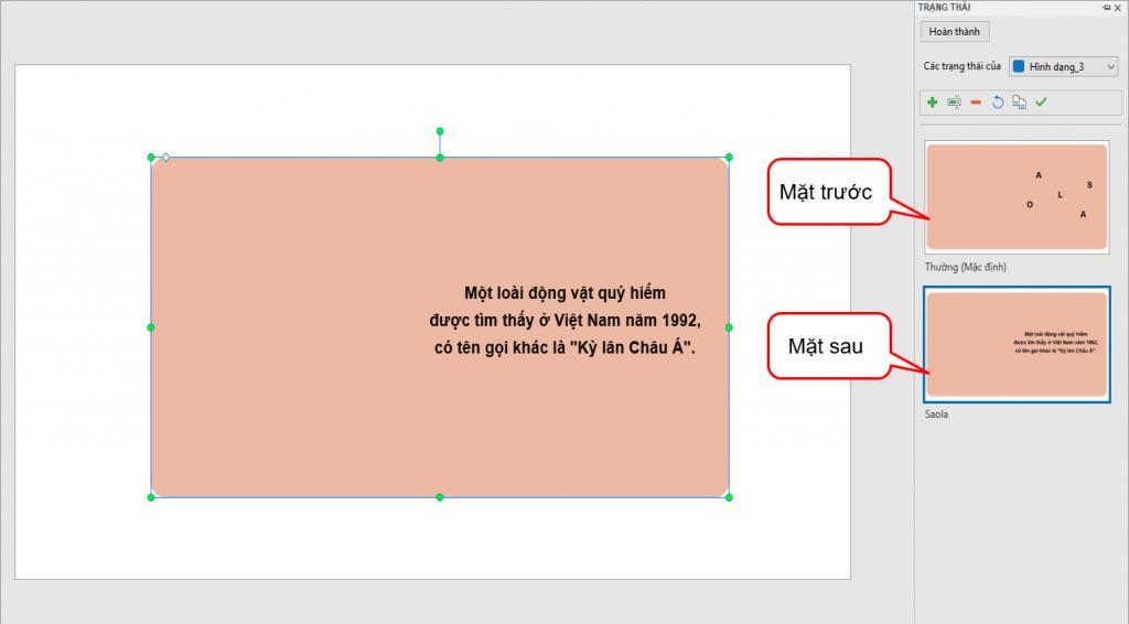 thêm trạng thái mới để tạo flashcard tương tác nâng cao
